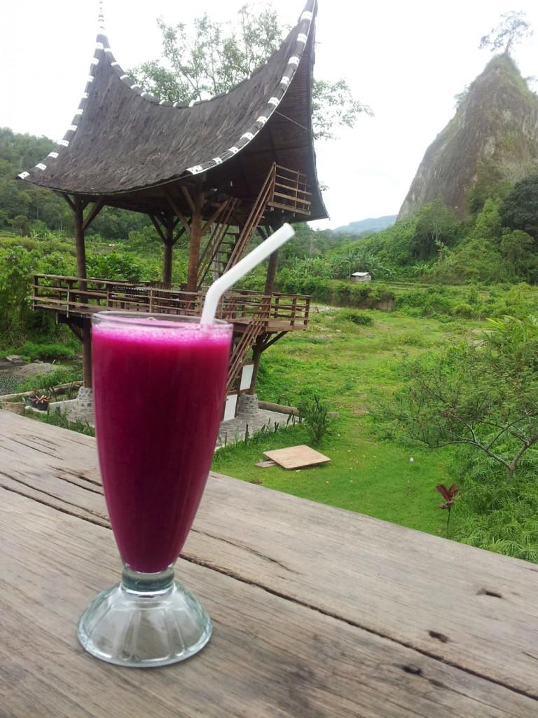 Minum jus buah naga sembari menikmati pemandangan Ngarai Sianok.