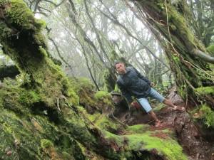 Di hutan ini bisa jadi lokasi foto pra-wed. lol